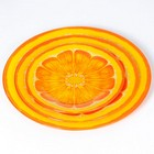 """Набор 00116LR/3-ST из 3-х круглых блюд """"Сочный апельсин"""""""