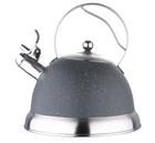 Чайник BG-3746